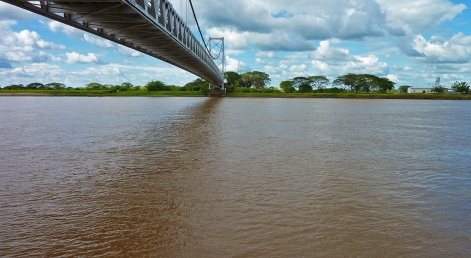 Río Apure / Bruzual / Edo. Apure / Venezuela