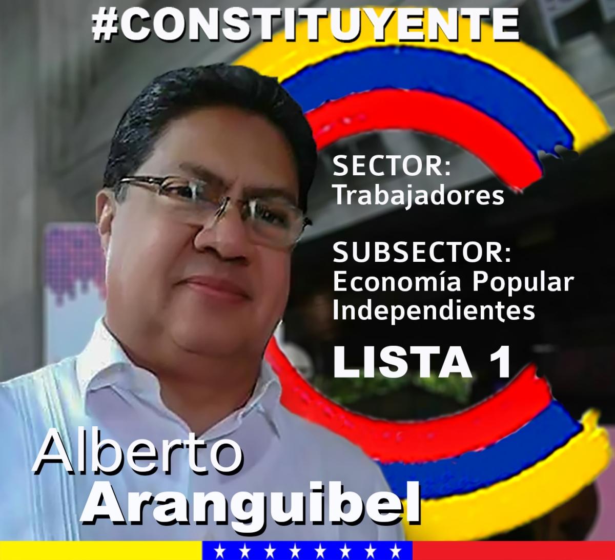 La Página Alberto Aranguibel Constituyente